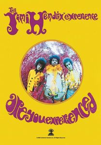 Jimi Hendrix Are You Experienced large fabric poster/ flag 1100mm x 750mm  (hr)